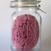 Brain in a jar by Momou crochet