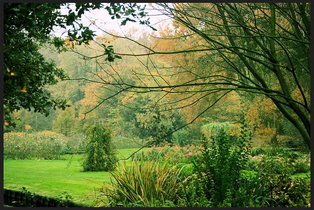Westbroekpark den haag herfst