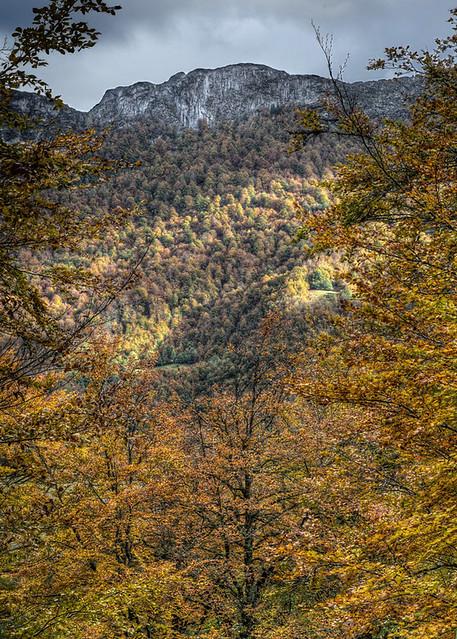 Autumn in Ponga, Asturias (HDR)