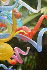 Chihuly at Fairchild Garden