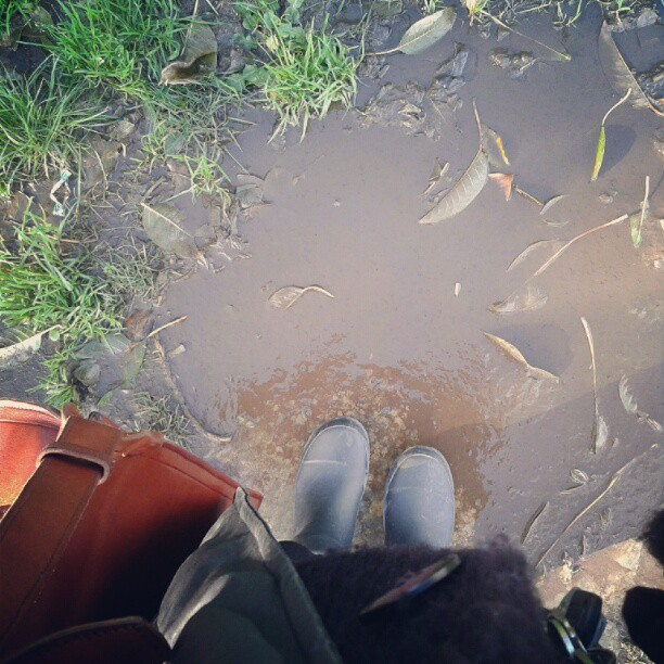 Después de la tempestad... vienen los charcos! #rain