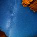 Night Light | Wall street Stars by Conor Barry
