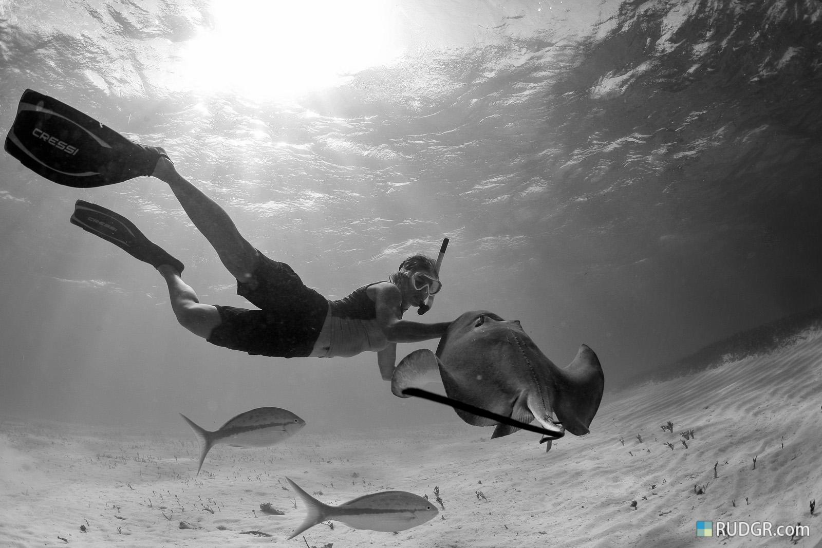 Stingray City, Cayman Islands.
