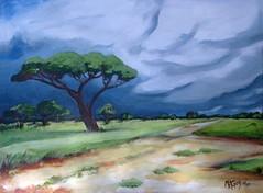 Stormy bushveld sky