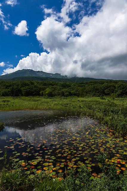 Tashirotai wetlands