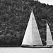 ** Petit voilier pour grande tribu ** by LiLi S.