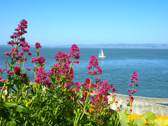 View from Alcatraz, San Francisco