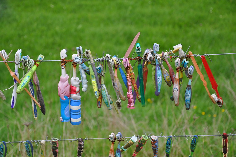 Toothbrush Fence - Only in NZ
