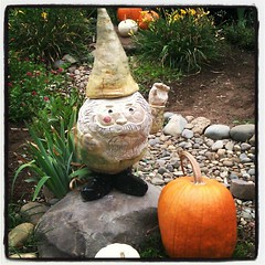 Gnome at Sacramento #waldorf #School #gnome #studentart #art #ceramics