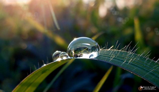 Water Drops 30