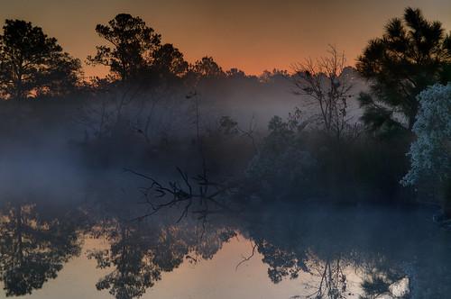 life morning pink blue wild orange alex fog sunrise dawn early nikon maryland shore harriet blackwater eastern hdr dorchester tubman delmarva d300s erkiletian