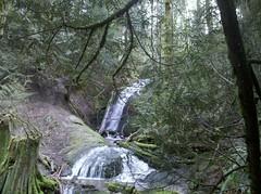 WA state hiking