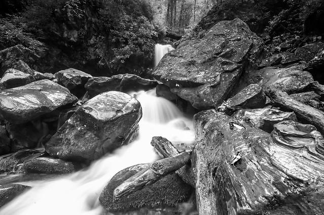 Grotto Falls (B&W)