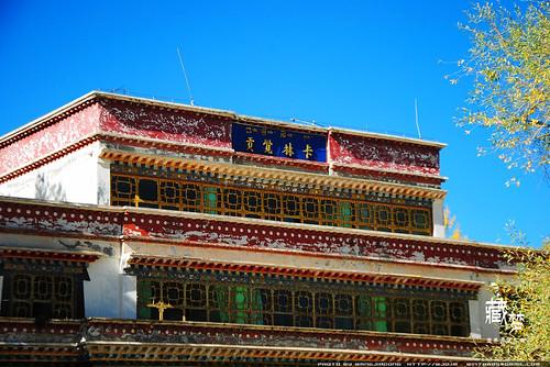 8102005703 d9d672bbcd 藏梦●追寻诺亚方舟之旅:梦境日喀则   王佳冬个人博客