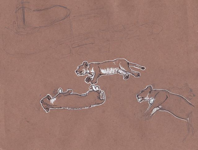 Sketchcrawl lions