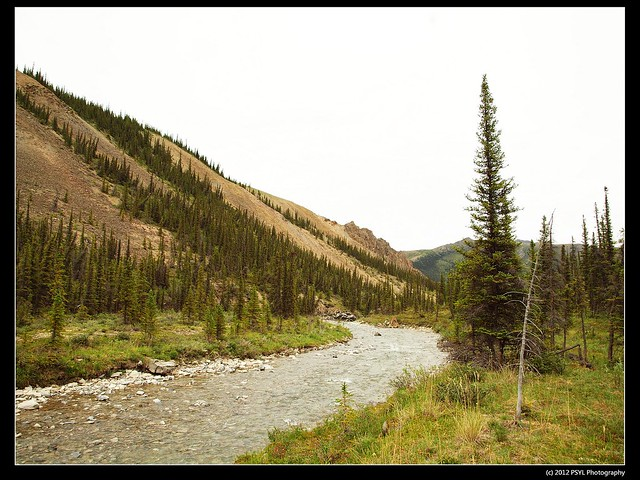 Upstream of Sheep Creek