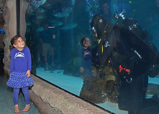 A Navy diver at Houston Aquarium.