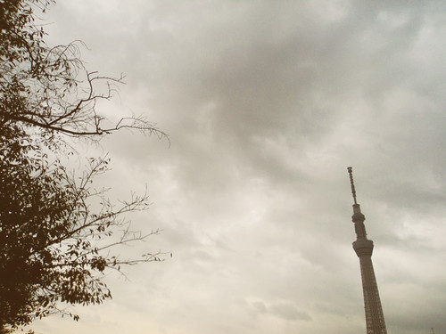 Tokyo Skytree with Leaves