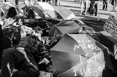 refugee protest.....