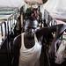PRISON-4534 Rumbek, South Sudan by jeromestarkey