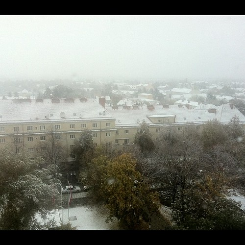 white roofs snow