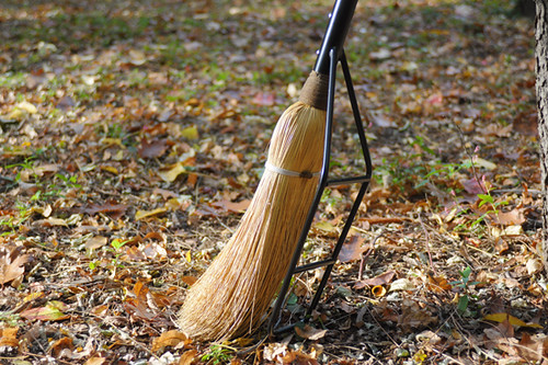 Griffon & Howl Touring Broom