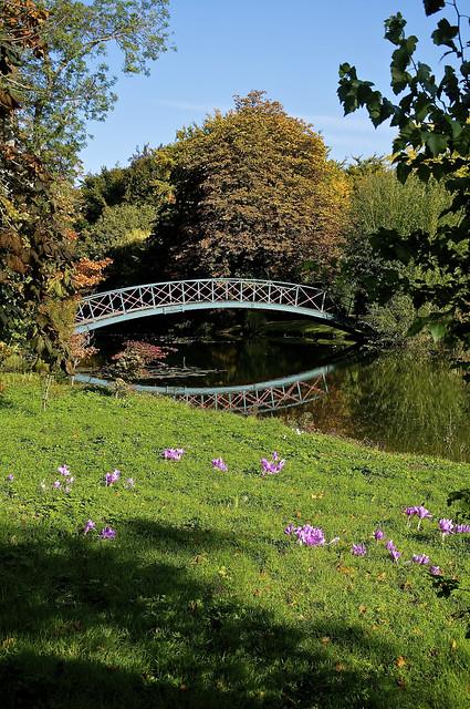 chippenham park gardens bridge flickr photo sharing. Black Bedroom Furniture Sets. Home Design Ideas