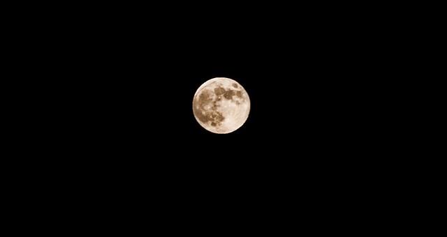 Rising Moon, Griffith Park