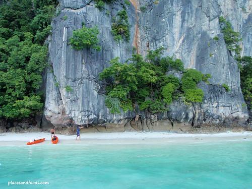 phi monkey island