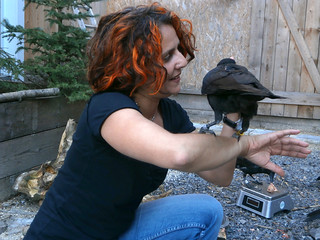 Christine Schwab and a raven