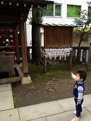 朝散歩 - 恵比寿神社 (2012/11/3)