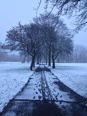 First snow in Calthorpe Park