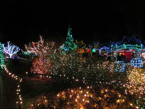 4th Birthday at the Idaho Botanical Garden lights