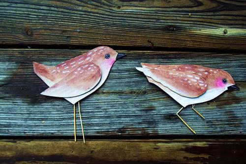 Cardboard birds