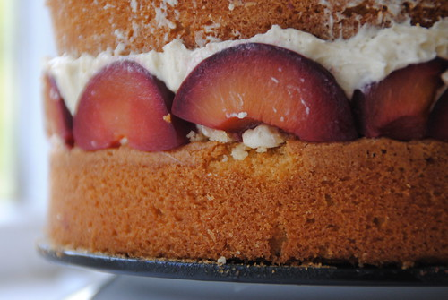 plum and cinnamon