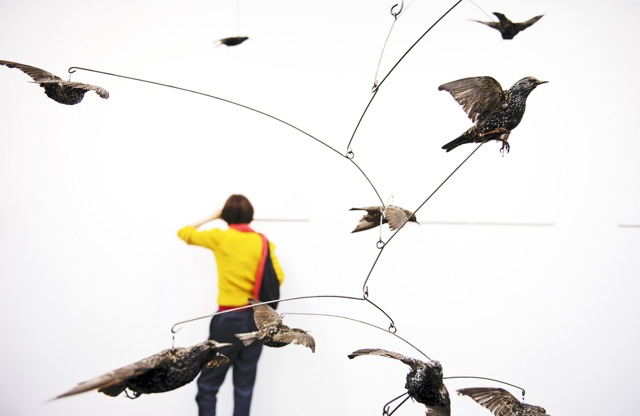 Henrik Hakansson, The Y Swarm (Sturnus Vulgaris) #2 (2011) Meyer Riegger, Berlin Courtesy of Linda Nylind: © Frieze London