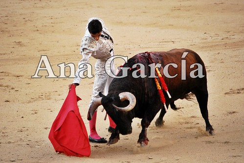 Miguel17