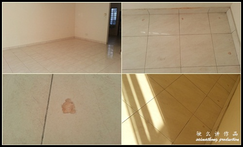 Dream House Makeover In The Process - Termites