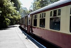 metropolitan area(0.0), cable car(0.0), tram(0.0), train station(1.0), passenger(1.0), vehicle(1.0), train(1.0), transport(1.0), rail transport(1.0), public transport(1.0), passenger car(1.0), rolling stock(1.0), land vehicle(1.0), railroad car(1.0),