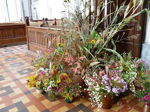 Schweriner Dom Herbstblumen