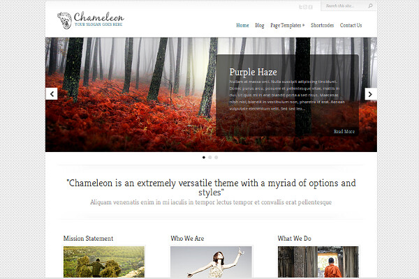 Chameleon Responsive Business WordPress Theme