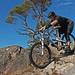 Balblair MTB Trails; Slab Happy by Anthony Round