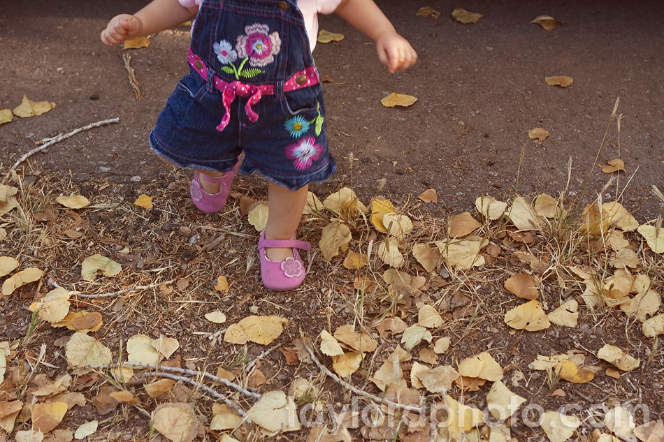 fall_mini_session_las_cruces_5