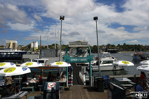 sydney fish market port