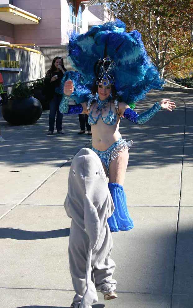 Shark dance