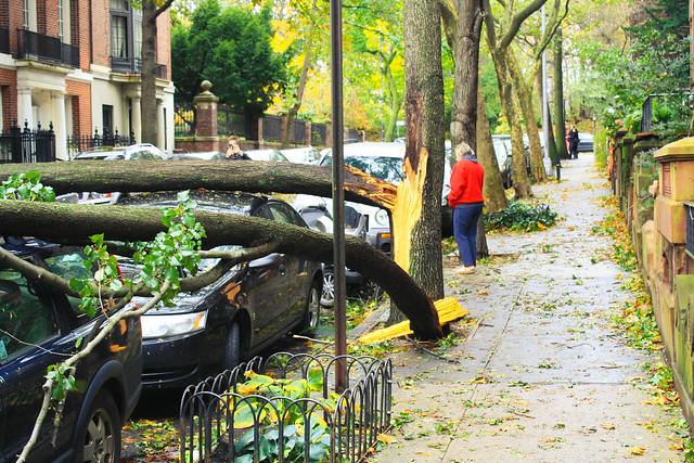 Hurricane Sandy Brooklyn, New York
