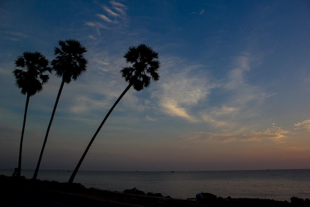 ต้นมะพร้าว 3 ต้น - ทะเลปราณบุรี