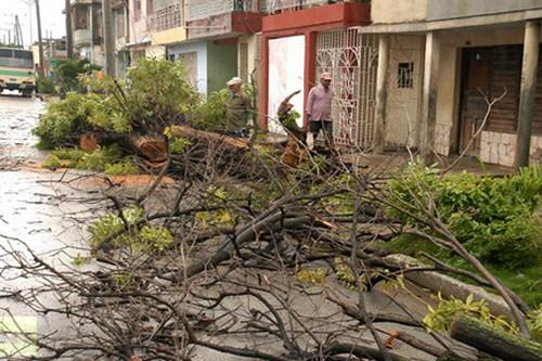 Las víctimas 'olvidadas' de Sandy en el Caribe 3