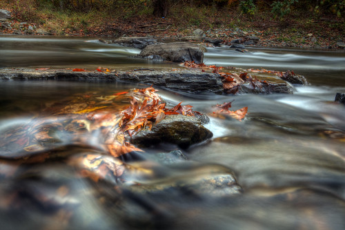 longexposure autumn motion fall leaves river washingtondc leaf stream cascades flowing rockcreekpark silky rockcreek ef2470f28lusm canon5dmkii singhrayvarintrio