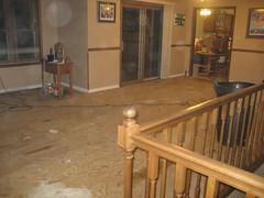 floor, wall, baluster, wood, handrail, room, property, wood flooring, hardwood, home, flooring,